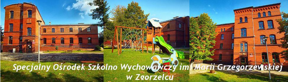 Specjalny Ośrodek Szkolno - Wychowawczy im.Marii Grzegorzewskiej w Zgorzelcu